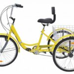 3 Wheel Bikes For Seniors: Top Picks Of The Year | Gear Affiti